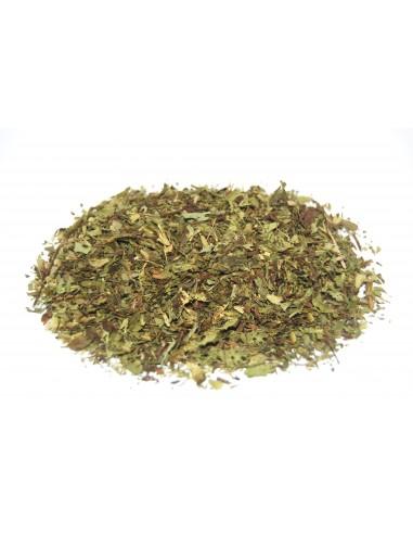 Stevia Rebaudiana cut leaf