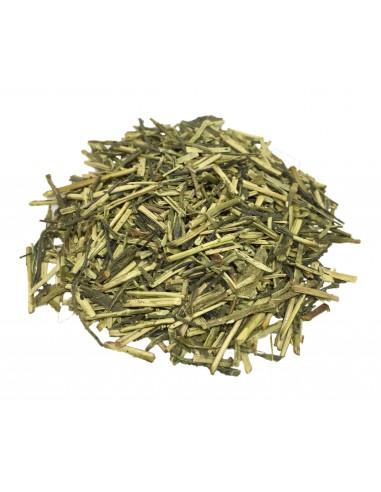Japanese Tea Kukicha Green BIO